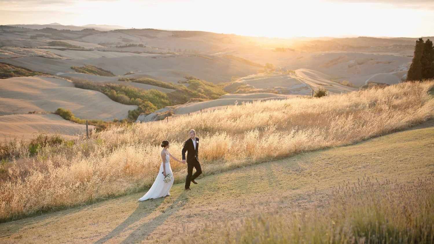 newlyweds walk happy in the countryside of the lazy olive