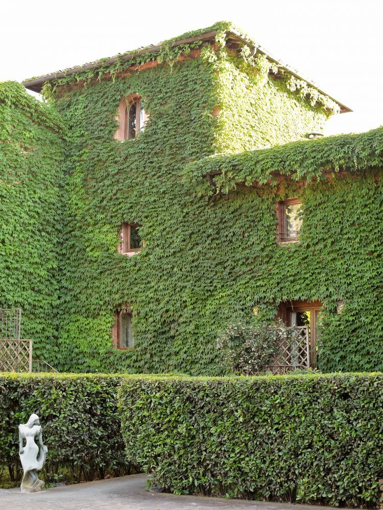the ivy rampling of the walls of the luxury hotel
